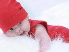 akrep burcu bebekleri