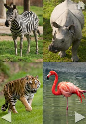Zoo Sounds ipad oyun