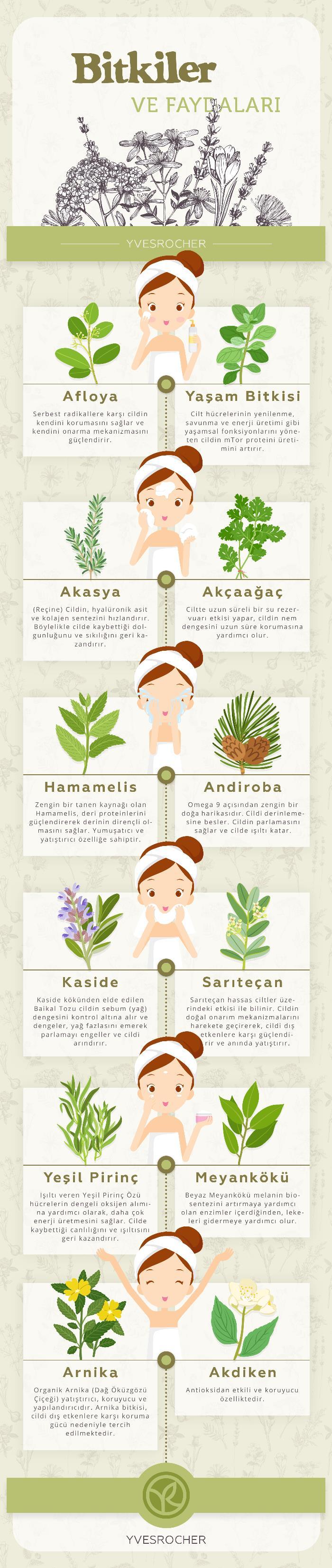yves rocher bitkiler ve faydaları